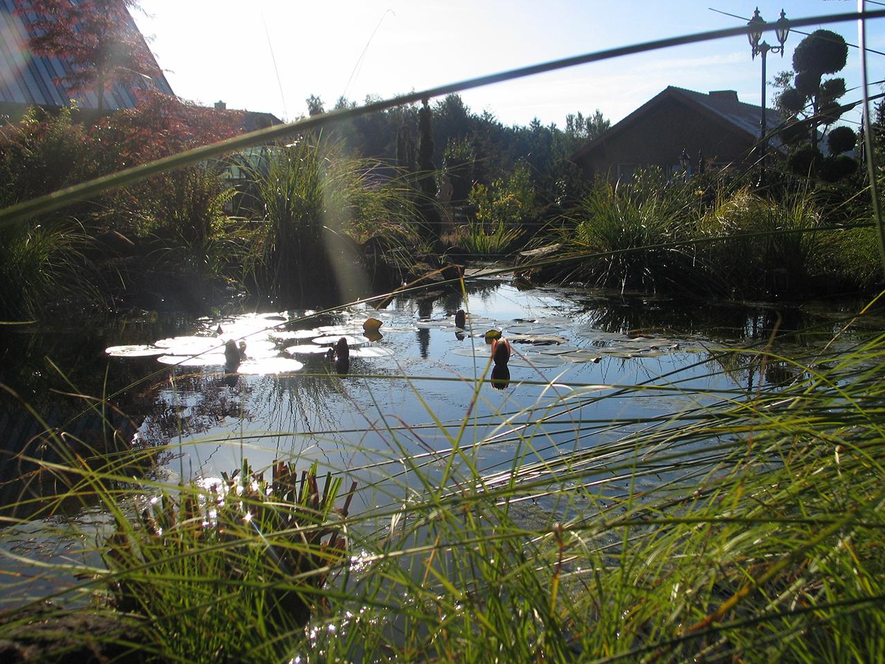 Wasser Im Garten. 0146. ...